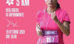 Bosco in Rosa – Corri tra i capolavori